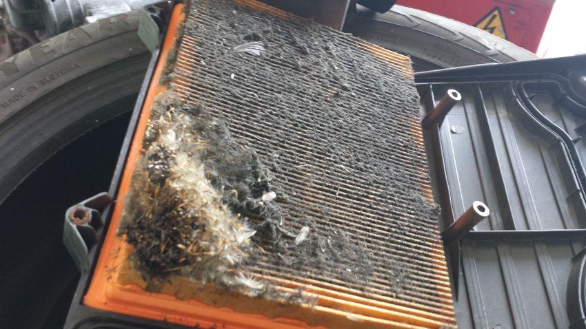 vzduchovy filter vymena